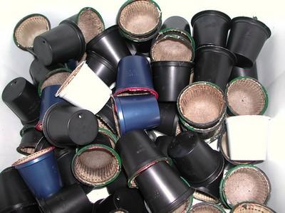 K-Cups-Environmental-Impact