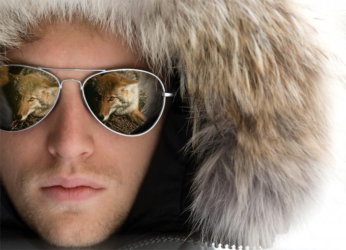 canada goose real coyote fur