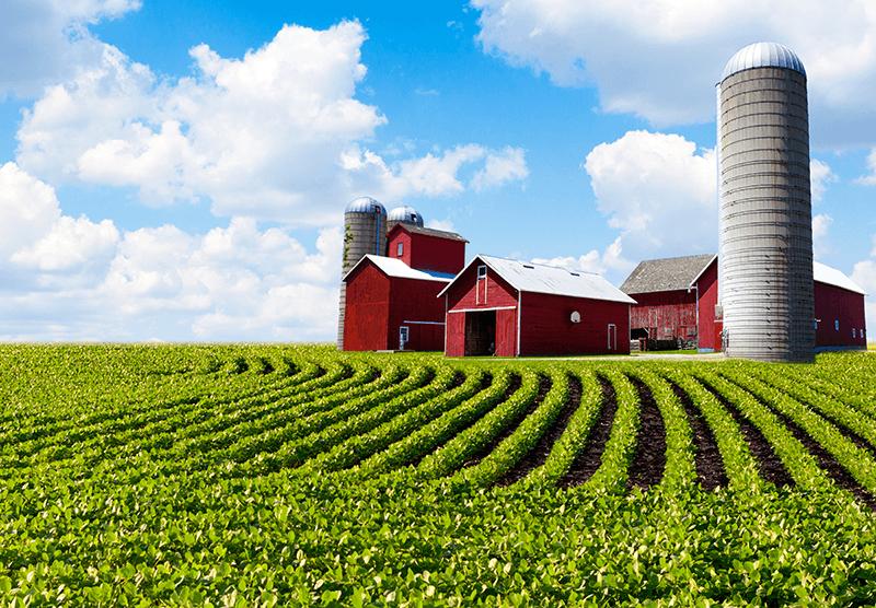 niche-farm@2x